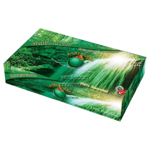 View Facial Tissue 100 Sheet Recycled details.