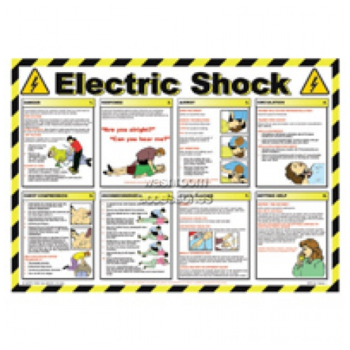 View Workplace Safety Poster - Electric Shock details.